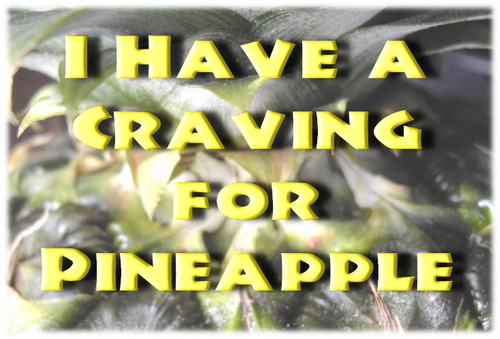 Pineapple w Text