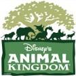 animal kingdom - disney