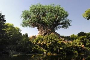 "alt=""the tree of life at Disney's Animal Kingdom"""