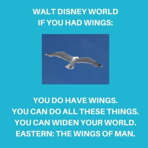 If-you-had-wings-WDW-Radio-Blog-Words-to-song-Kristin-Fuhrmann-Simmons