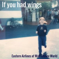 if-you-had-wings-walt-disney-world-attraction-1970s