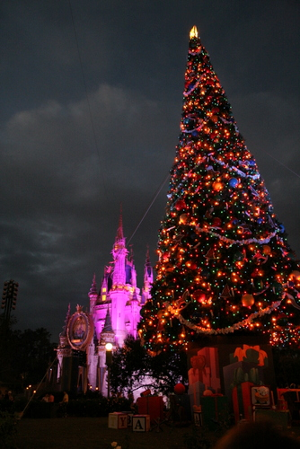 tree 9 this image captured in 2005 is a christmas tree in disneys magic kingdom park that no longer exits located on the right side of cinderellas