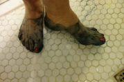 Blue feet TS Colin