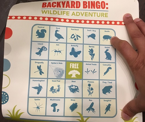 bingo card in box #3