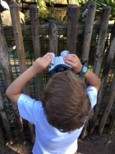 Countdown to Fun Animal Kingdom binoculars
