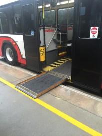 Walt Disney World transportation accessible bus