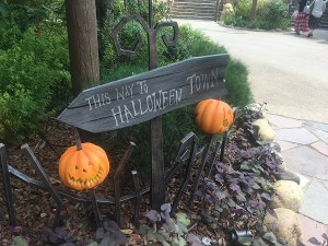 Journey to Halloween Town sign