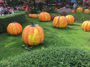 Hong Kong Disneyland pumpkins