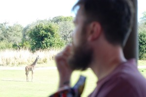 Riding Kilimanjaro Safaris at Disney's Animal Kingdom