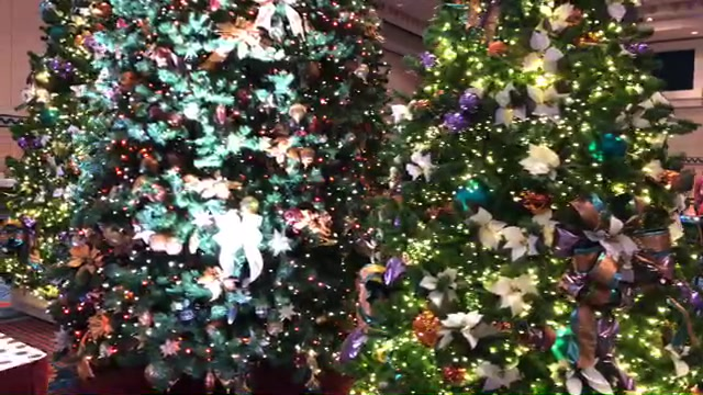 Christmas In July Disney World.Live Video Christmas In July In Walt Disney World What S