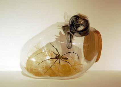 AdamSmith_spiderfarm.jpg