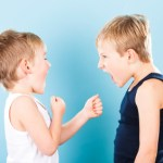 fighting_brothers_000015071320XSmall