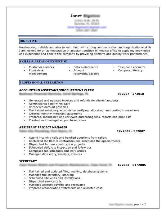 Home Design Ideas. Professional Resume Format Examples