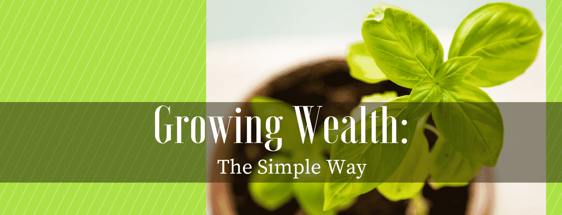 Growing Wealth: The Simple Way