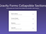 Gravity Forms Collapsible Sections 1.1.16
