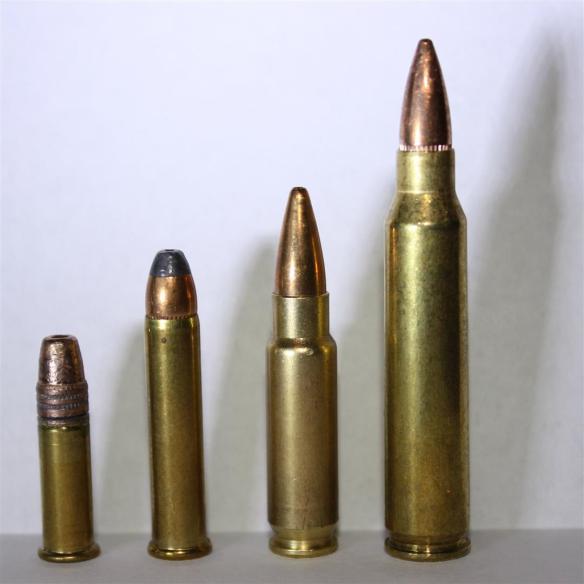 .22LR, .22WMR, 5.7x28mm, 5.56x45mm