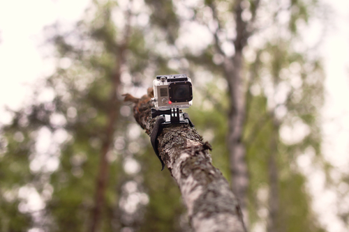 Video camera GoPro tied to the wooden log