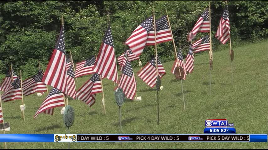 On The Road: Free Veterans Picnic