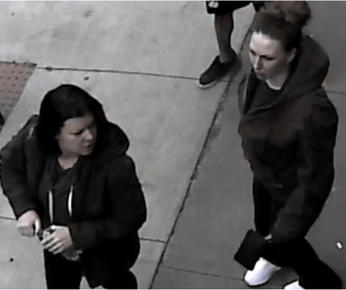 Women suspects in SC theft_1540579611008.PNG.jpg