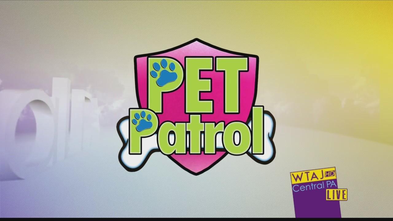 10_9_Pet_Patrol_0_20181009214649