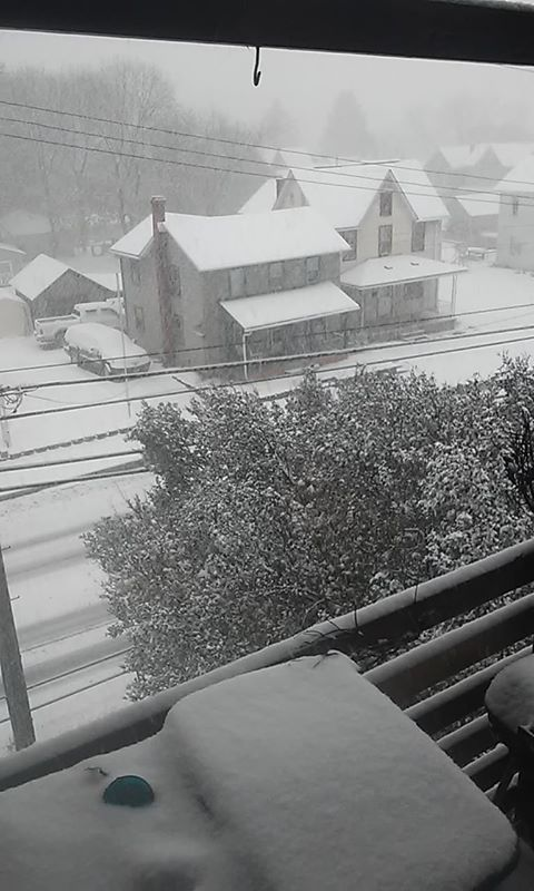 Snow in Bellefonte_1542315182013.jpg.jpg