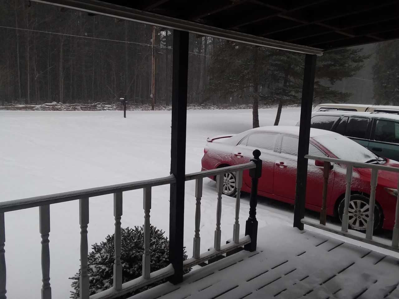 Snow in St. Marys Ginny Schneider 2_1547930791588.jfif.jpg