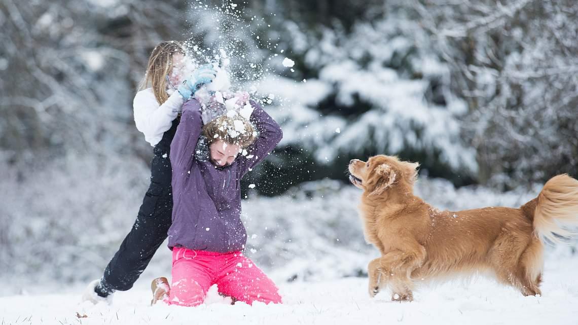 WEB19-WeatherClimate-KidsPlayingInSnowWithDog-WinterRecreation-4475x2517_1548284571969.jpg