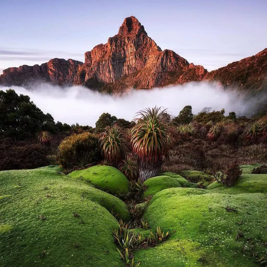 """Micro adventures with @crispy_scapes 1/5 """"Radiant Anne"""" Morning light on Mt Anne in Tasmania. """"It's so rewarding getting to locations as wild and untouched as this scene and being able to capture it for myself and others to enjoy"""". #weareexplorers"""