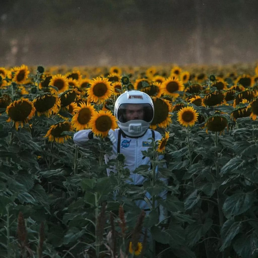 "Microadventures with @twistdee 2/5 Sunflower fields in Quirindi on the North West Slopes of NSW. ""The season runs from Dec to Mar and it's quite a sight. The flowers tower over your head (especially if you're only 5'3"" tall like me) and we had a little fun with this setting.""#weareexplorers"