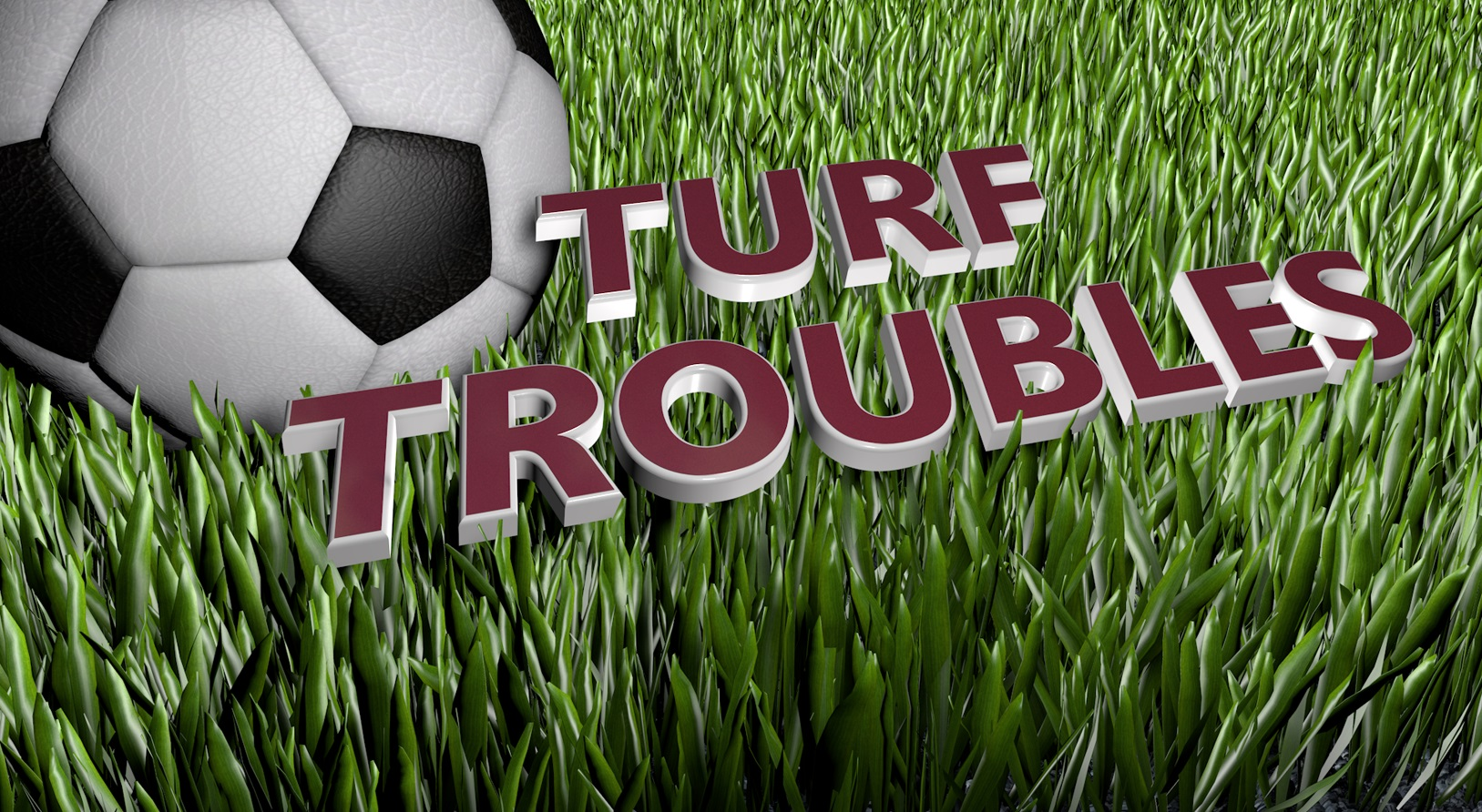 Turf Troubles_1461889585061.jpg