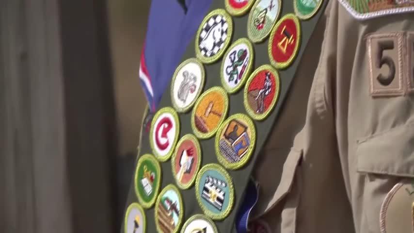 Boy Scouts will allow girls in cub scouts