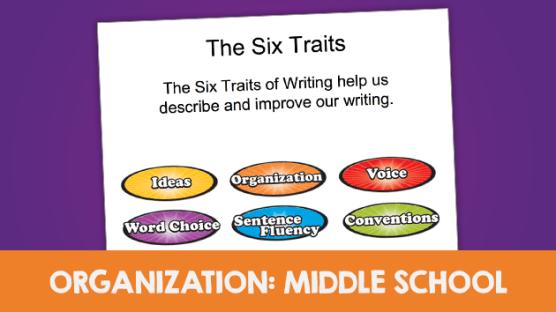 23-organization-middle