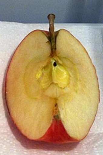 how to stop cut apples going brown