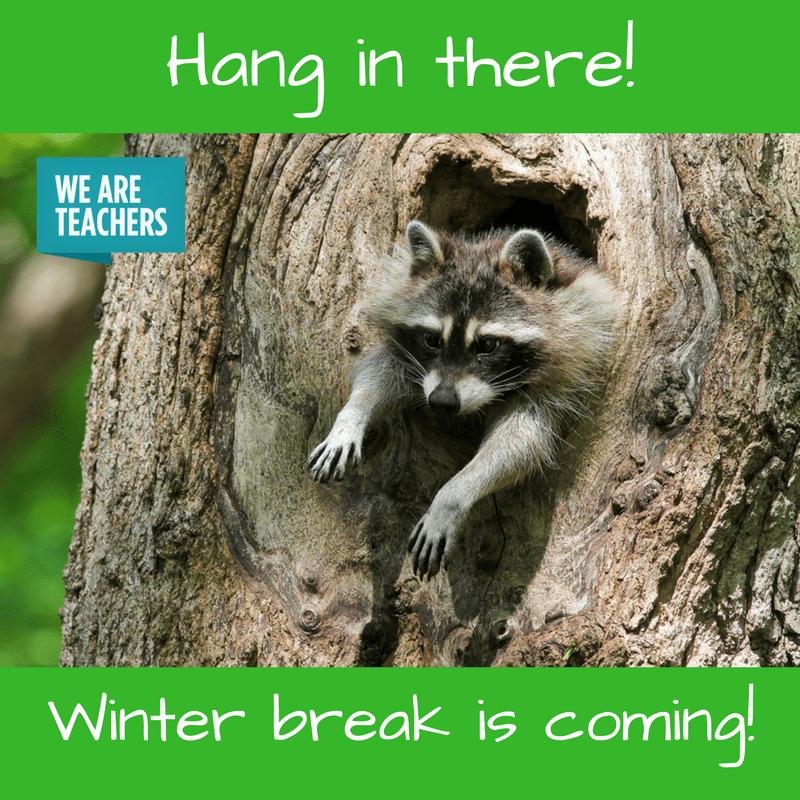 18 Hilarious Winter Break Memes Only A Teacher Will Understand