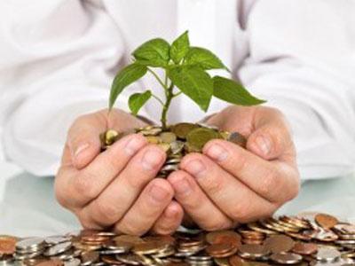 money with plant