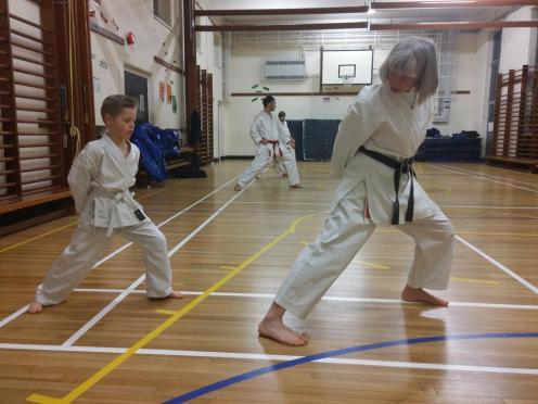 kyler-learns-karate005