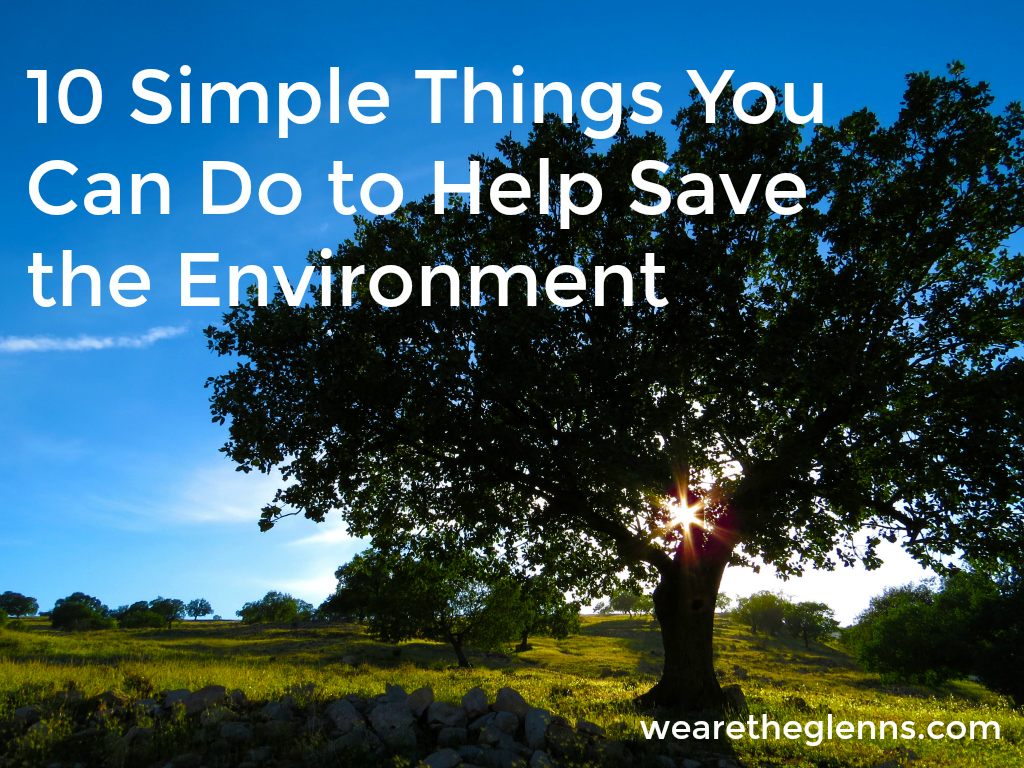 10-simple-things-you-can-do-to-help-save-the-environment