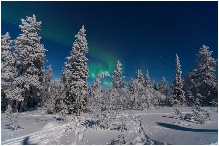 Northern Lights Ski Tour Finland