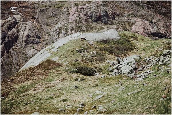 Marmot Austria
