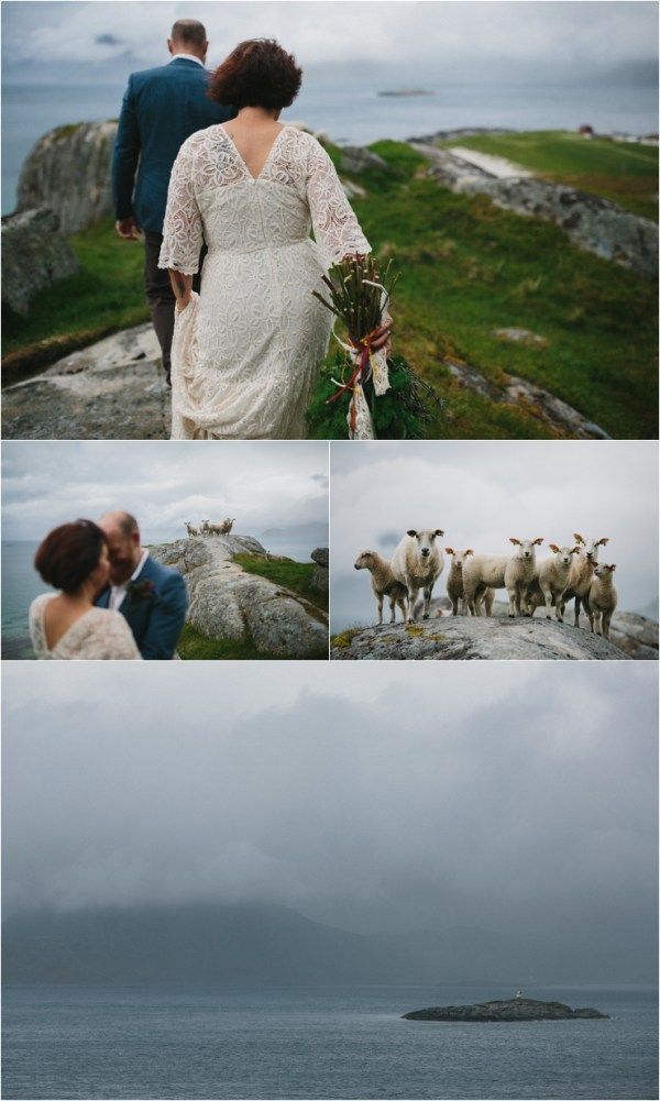 The elopement is witnessed by a herd of very curious sheep in Lofoten Norway by Thomas Stewart