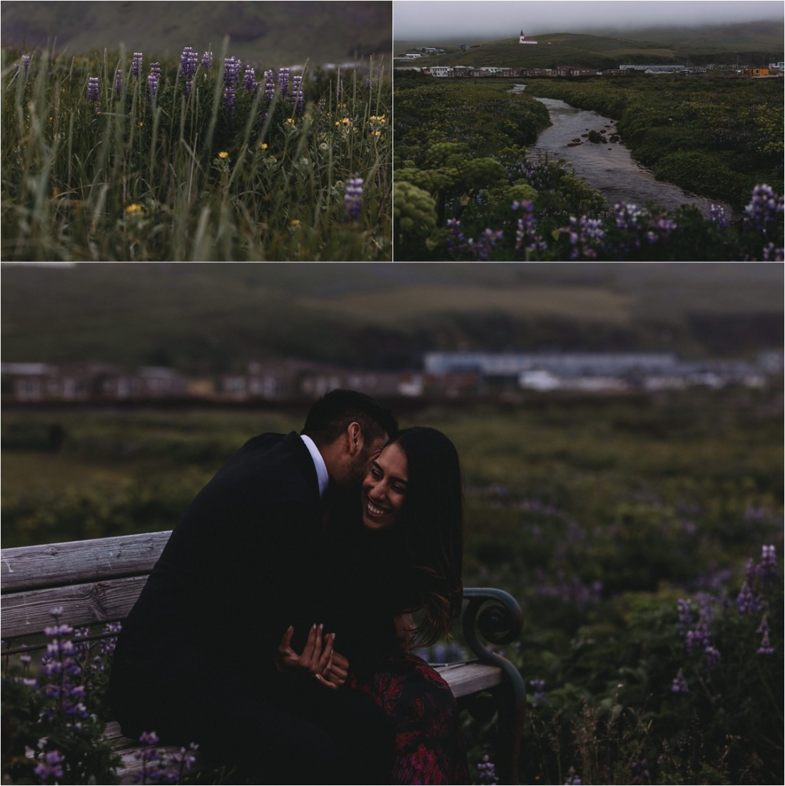 Purple wildflowers for their proposal photo shoot in Iceland by Zakas Photography