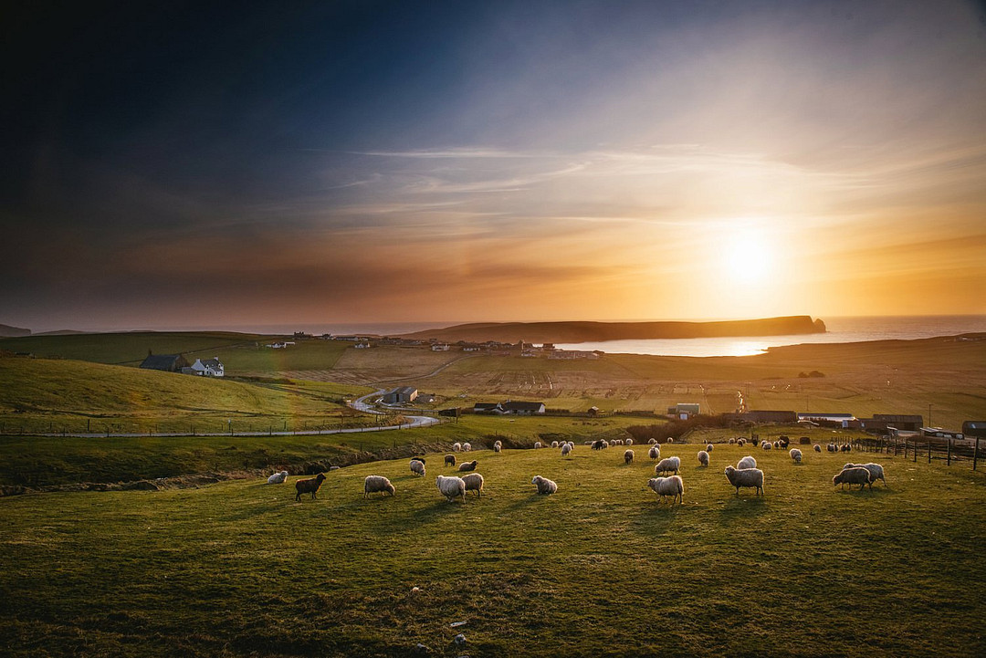 Four-day engagement tour through the Shetland Islands