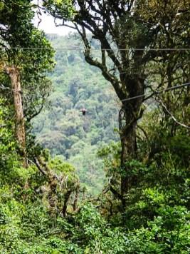 2. Monteverde - ziplining