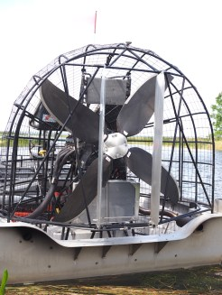 Airboat in Orlando