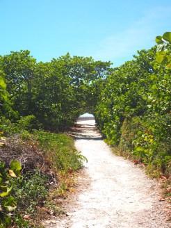 Bahia Honda state park weg oude brug