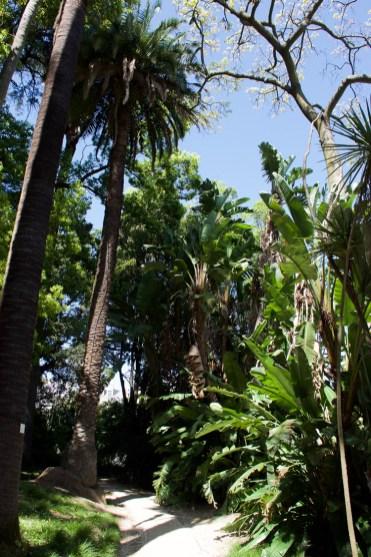 Botanische tuin in lissabon