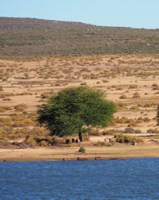 Meer bushmans kloof