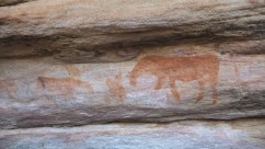 rotstekeningen bushman