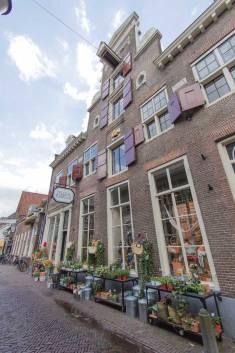 DilleKamille-Krommestraat