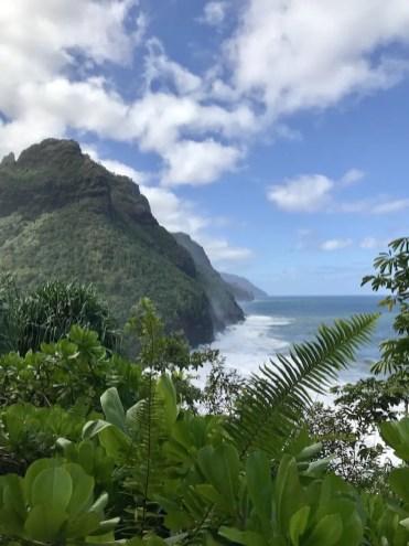 Hawaii bergen eiland groen